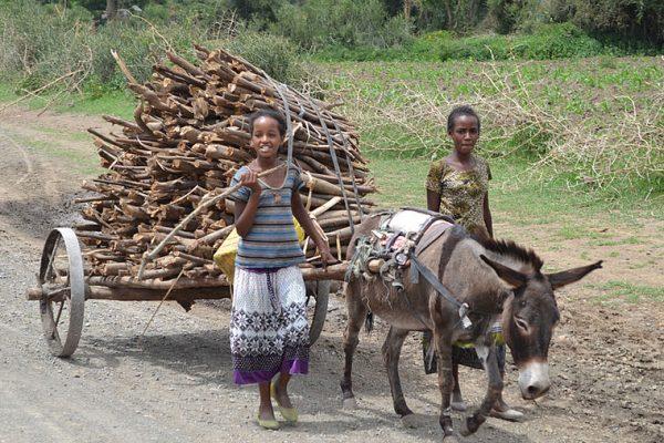 csm_aethiopienkinder01_juli2015_b8aeeb120d